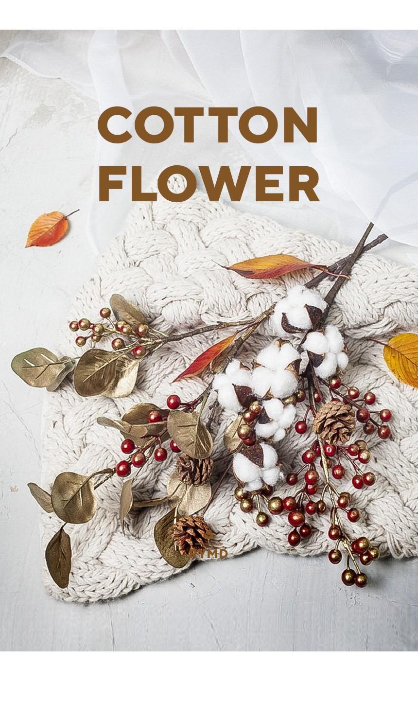 Cotton(10).jpg