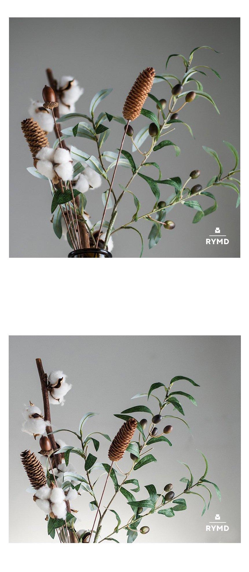 Cotton(7).jpg