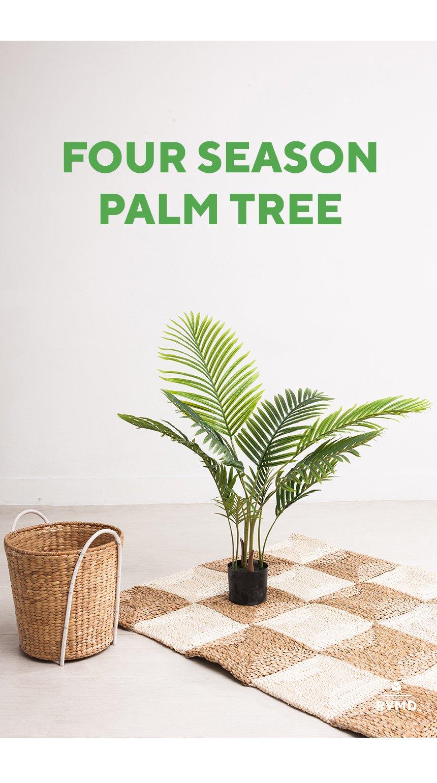 FOUR-SEASON-PALM-TREE_04.jpg