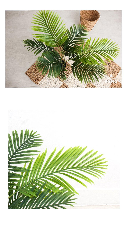 FOUR-SEASON-PALM-TREE_05.jpg