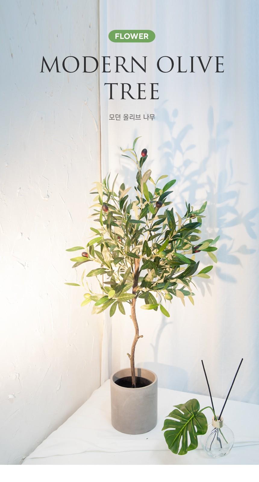 MODERN-OLIVE-TREE_01.jpg