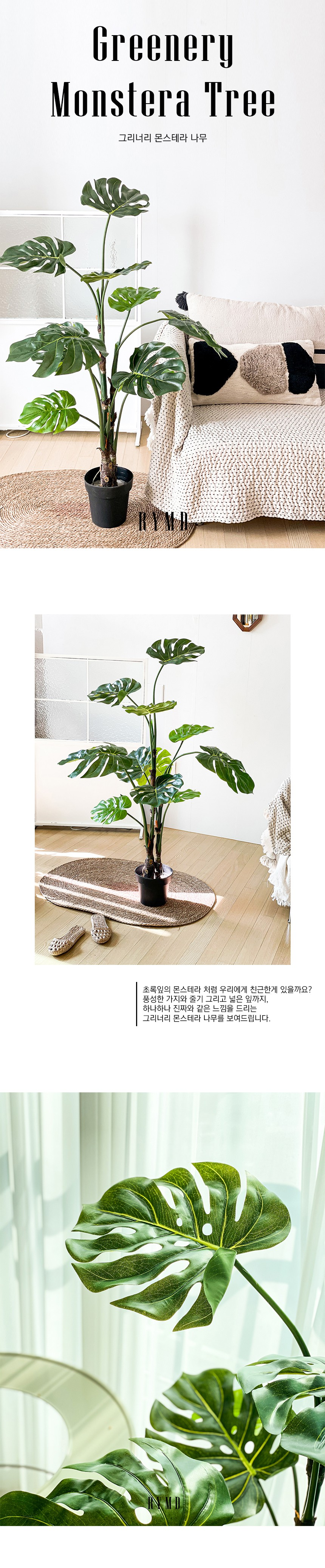 greenery-monstera-tree_01.jpg
