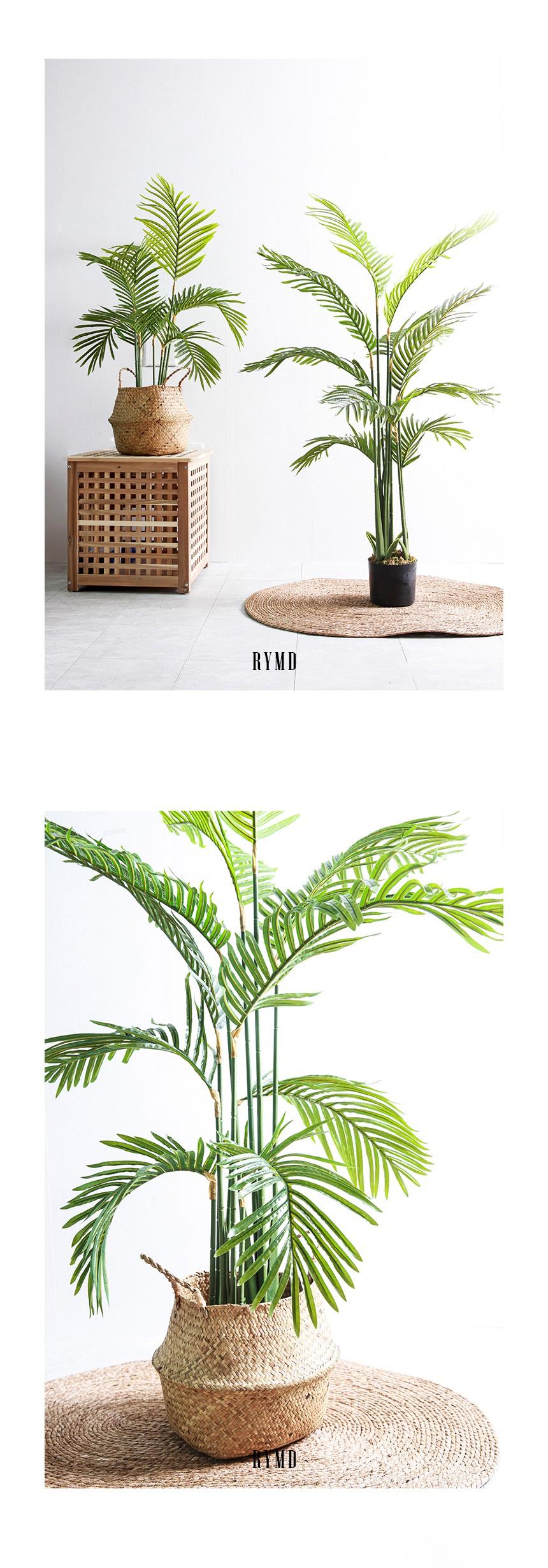 greenery-areca-tree_02.jpg