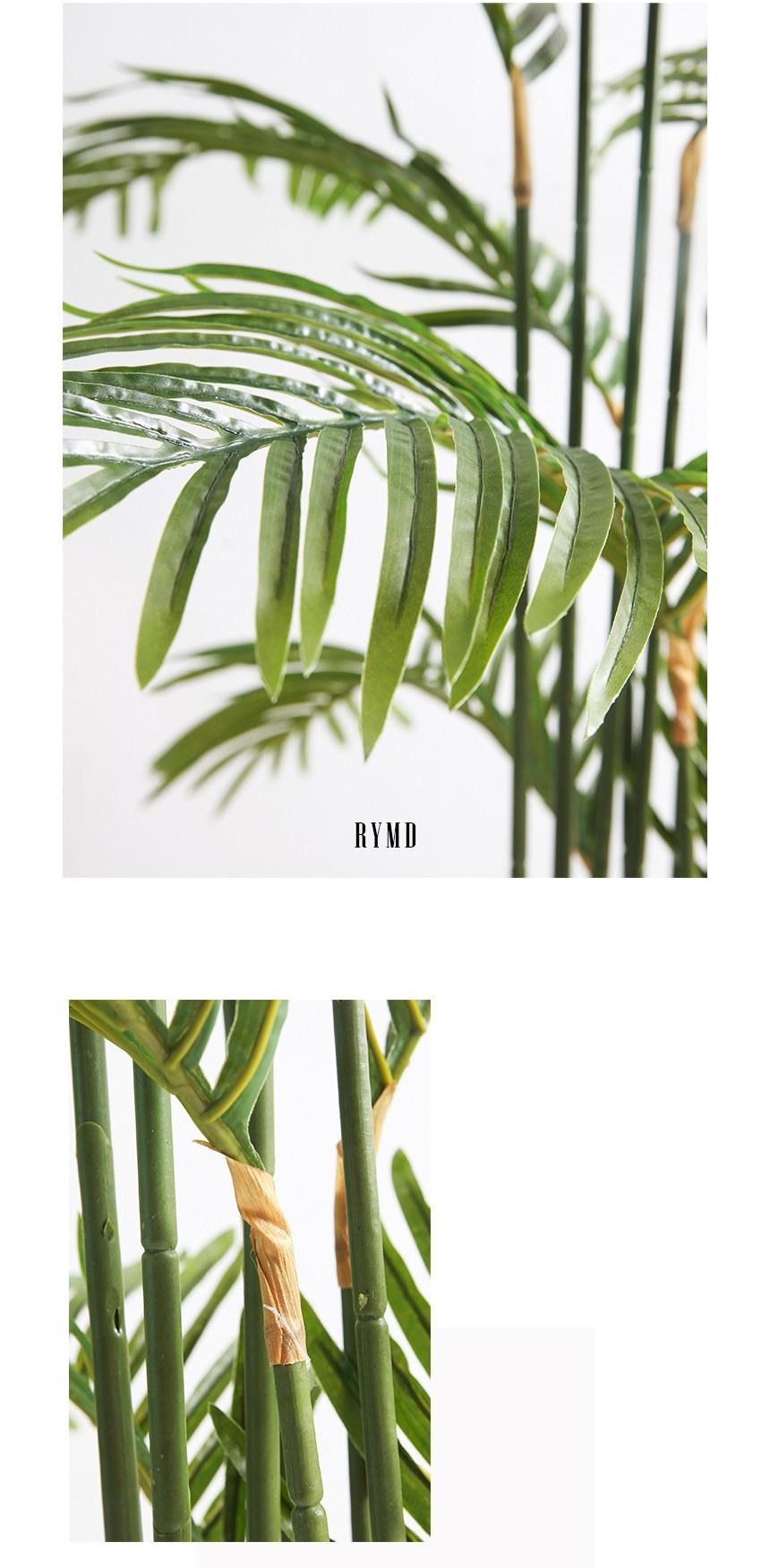 greenery-areca-tree_07.jpg