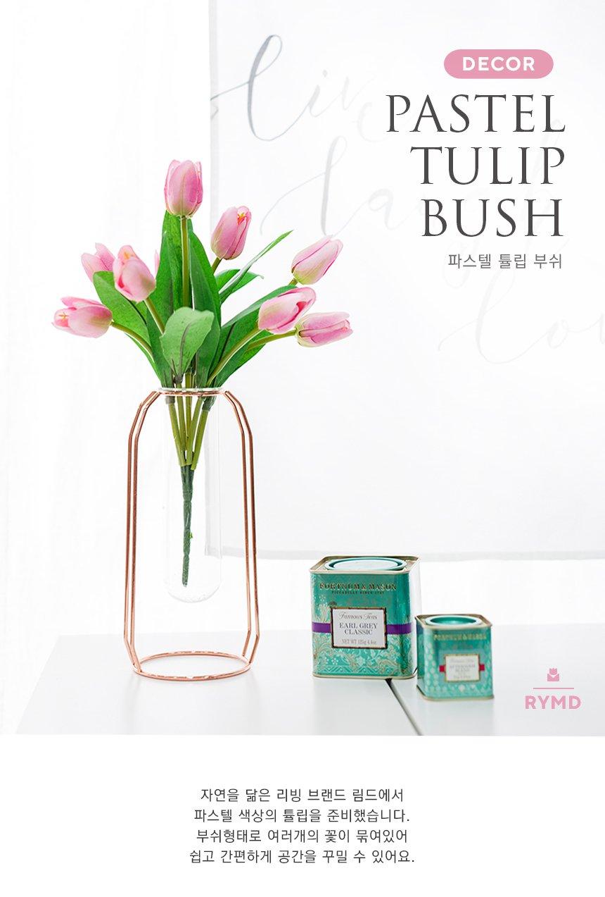 VIO-tulip-bush_01.jpg