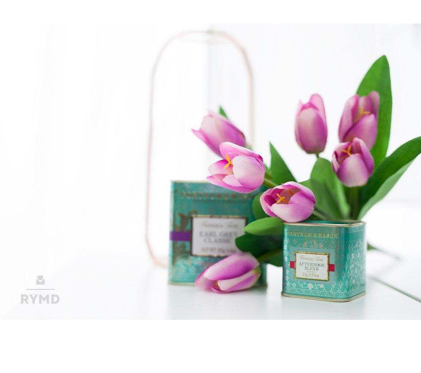 VIO-tulip-bush_02.jpg