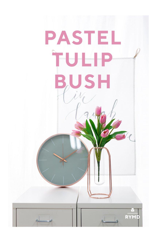 VIO-tulip-bush_03.jpg