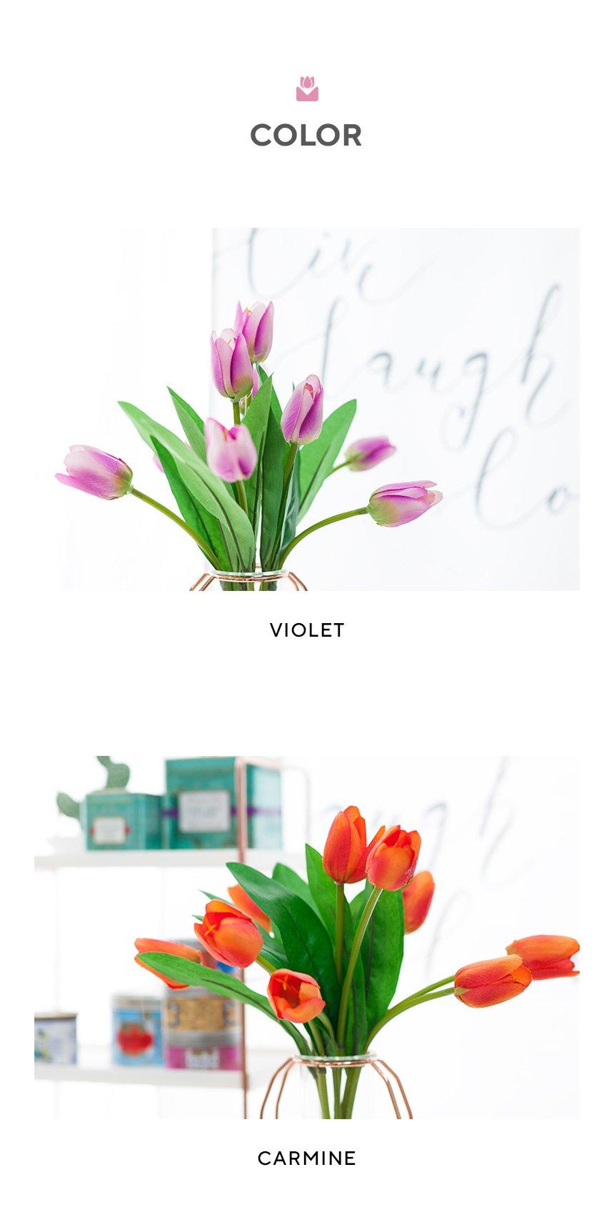 VIO-tulip-bush_05.jpg