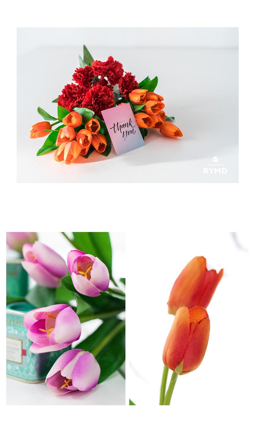 VIO-tulip-bush_06.jpg