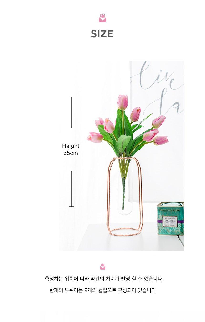 VIO-tulip-bush_08.jpg