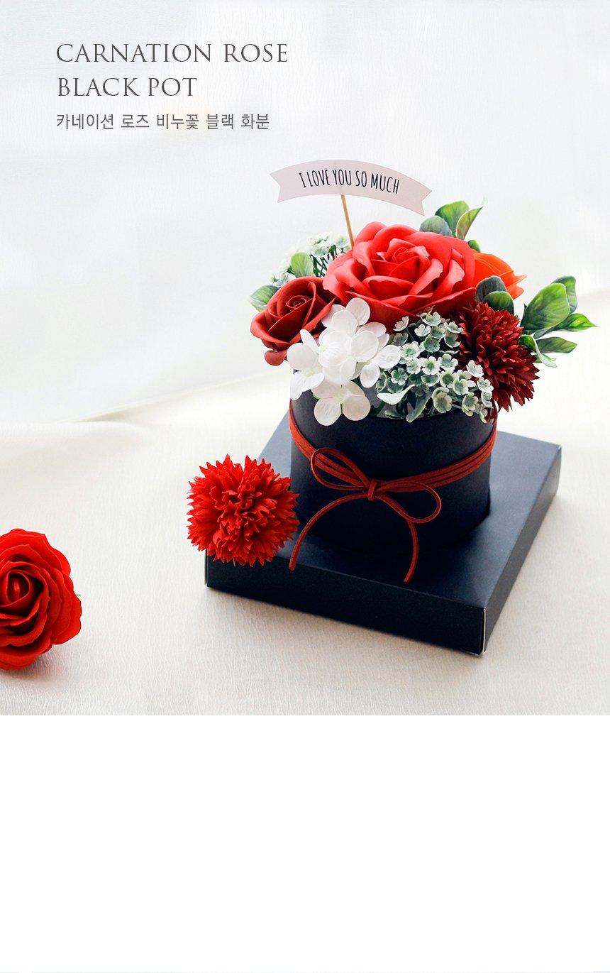 carnation_ black_1.jpg